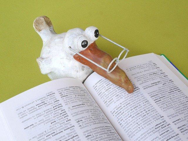 辞書で調べる鳥